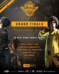 indonesian best pubg squads set to compete for the national championship finale