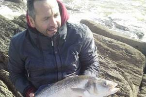 fish of the week: the calm after storm callum led to a perfect spot of fishing
