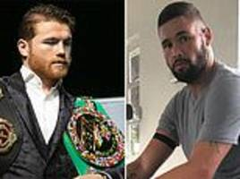 tony bellew slams 'scumbag drugs cheats' and says: 'canelo would have had to eat a whole cow'