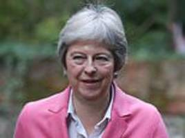 tory rivals for theresa may's job are warned to 'get a grip' after 'disturbing' claims