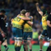 rugby: lessons learned - all blacks wary of desperate wallabies ahead of japan test