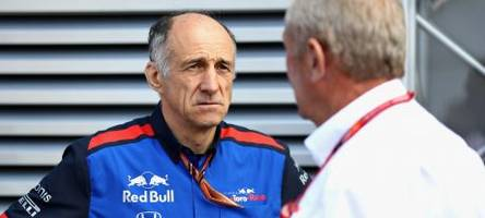 toro rosso to announce albon after abu dhabi