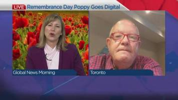 Poppy 2.0: Remembrance Day symbol gets a digital makeover