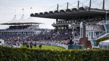 goodwood racecourse: six plead guilty to violent disorder
