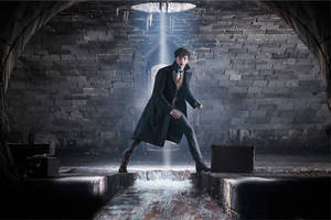 'fantastic beasts:' j.k. rowling teases future stories as fans vow to #protectthesecrets