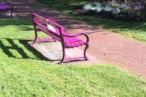 dunblane park's pink benches re-painted ahead of remembrance sunday