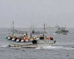 Taiwan fishermen protest over crackdown on troubled industry#source%3Dgooglier%2Ecom#https%3A%2F%2Fgooglier%2Ecom%2Fpage%2F%2F10000