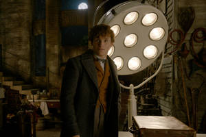 'fantastic beasts 2' film review: j.k. rowling prequel-sequel conjures magic and messiness