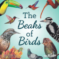 New NSTA Kids Book Invites Students on a Tour of the Wonderful World of Birds and Beaks