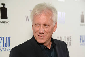 james woods helps alyssa milano, holly marie combs with horse rescues during southern california fires