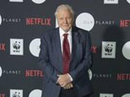 BBC brand Netflix's Sir David Attenborough series Our Planet a 'rip-off' of Planet Earth