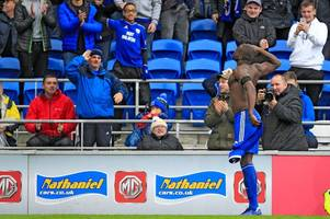 why sol bamba didn't get booked for taking his shirt off after late cardiff city goal v brighton