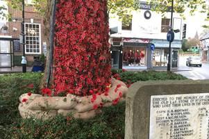 stunning cascade of poppies formed part of this town's special remembrance day