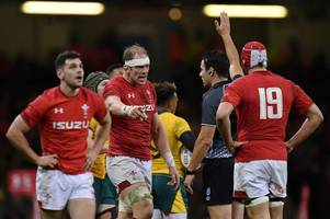 the unheard conversations during wales v australia as one welshman really gets on the referee's nerves