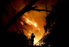 Death toll grows to 29 in Northern California wildfire; 228 missing