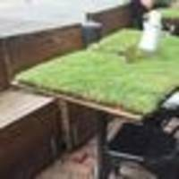 Get off the grass: Melbourne restaurant's grass covered tables are getting ripped to shreds on Instagram