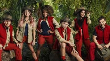 I'm a Celebrity: Harry Redknapp, Sair Khan and Nick Knowles in line-up