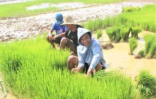 GK Enchanted Farm fights poverty in the Philippines with NetSuite