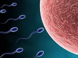 Climate change could hit male fertility as sperm can be seriously damaged by heatwaves