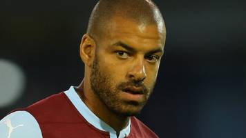steven reid: afc wimbledon add former blackburn defender to coaching staff