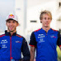 motorsport: kiwi brendon hartley stewing after verbal stoush with toro rosso teammate pierre gasly