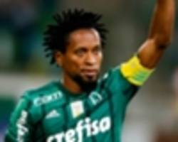 ze roberto: i played until i was 43 - so why can't brazil's ageing stars?