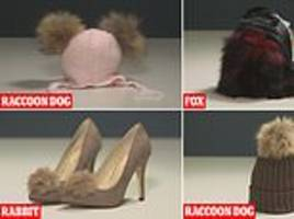 'faux fur' fashion made from real animals sold in britain's high streets, including fox handbag