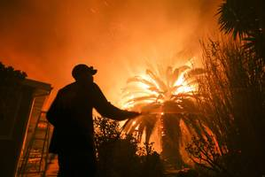 california's biggest utility provider has seen half its market value wiped out since the wildfires started (pcg)