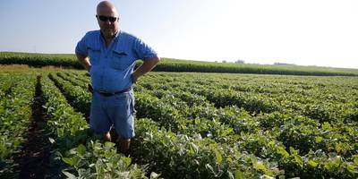 us farmers are taking a beating from the trade war with china