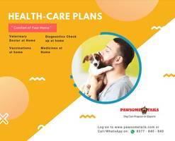 pawsome tails redefining pet care in india
