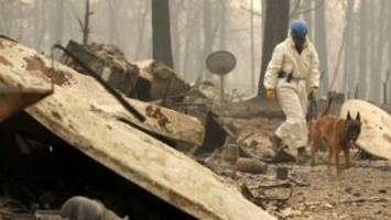 California wildfires: Survivors share stories of heroic rescues