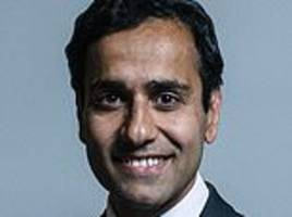tory vice-chairman quits over government's failure to help immigrant mother