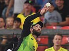 glenn maxwell takes brilliant catch... but south africa inflict more misery on australia