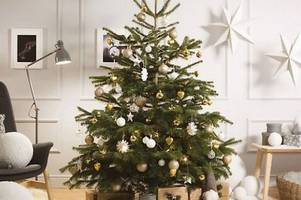 Ikea is selling real Christmas trees for £5 - and giving styling tutorials