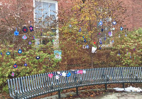 thousands of jewish stars hung across pittsburgh as sign of unity
