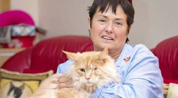 owner whose cat was shot in eye loses compensation case