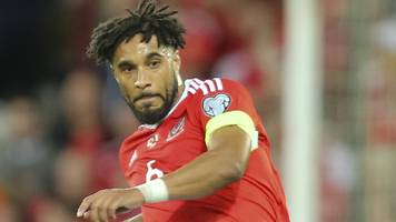ashley williams: wales skipper apologises for fan insult video