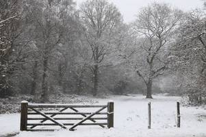 now don't panic but croydon might see some snow tomorrow