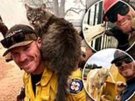 California firefighter finds feline friend during wildfire rescue and jokes cat won't leave his side