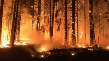 california fire conspiracies a hit on youtube