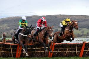 my tent or yours to pitch up for unibet international hurdle repeat bid
