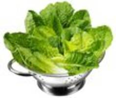 update: some romaine now safe to eat