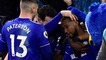cardiff city 2-1 wolves: junior hoilett stunner takes hosts out of bottom three