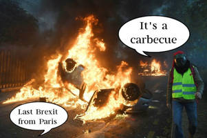 yellow jacket protest: french prove no one's taking climate change seriously