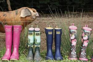 joules becomes latest big retailer to draw up no-deal brexit contingency plans