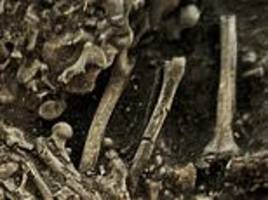 Plague was NOT brought to Europe by foreign invaders