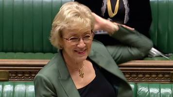 Did Commons Leader Andrea Leadsom just 'flounce'?