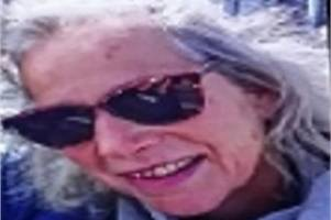 vehicle found near coast in search for missing 61-year-old joanna aplin