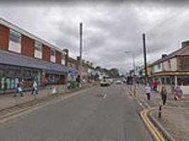 Pensioner, 94, is killed after she was hit by a police van on a busy Christmas shopping street