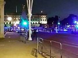 Uber driver 'attacked police with a samurai sword outside Buckingham Palace'